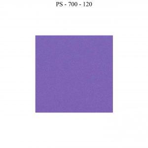 Passepartout PÚRPURA 120*80
